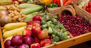 أغذية طبيعية لمكافحة الخلايا السرطانية في الجسم