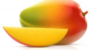 Vector illustration of mango fruit