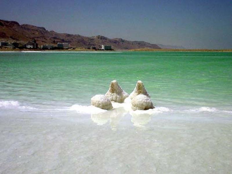 Dead sea picture